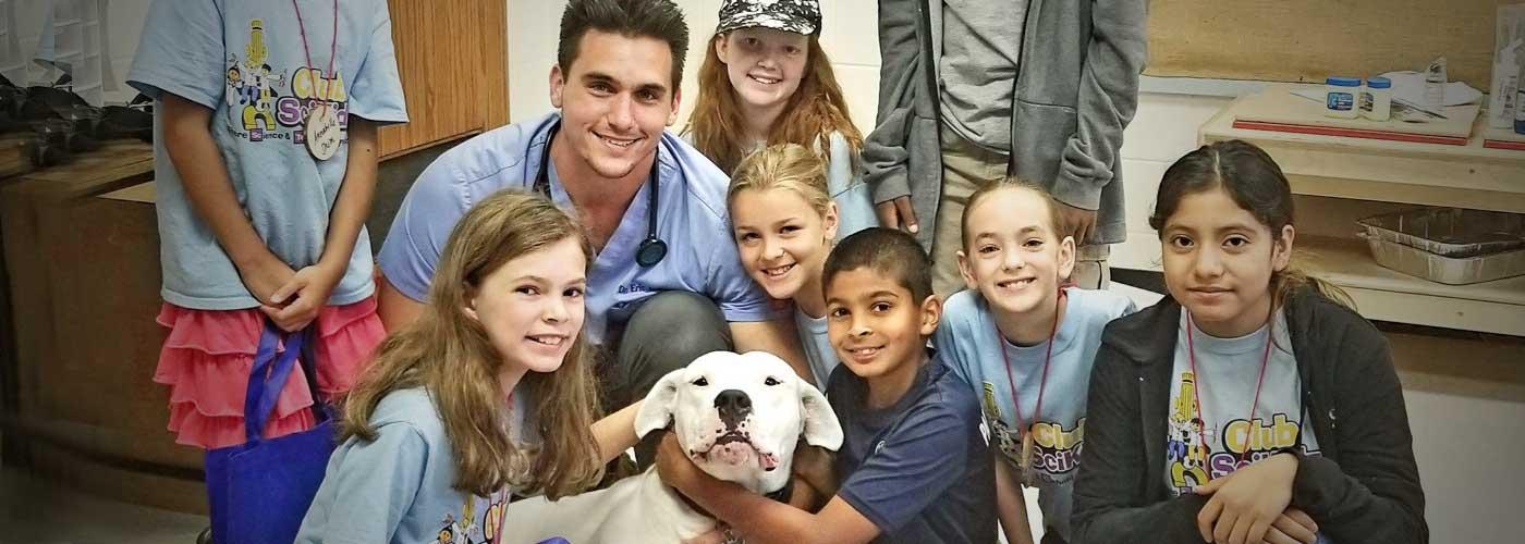 Veterinary Medicine – Newly Revised!