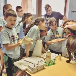 Austin Texas Science Summer Day Camps
