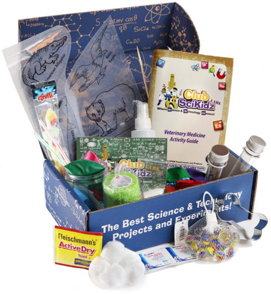 Veterinary Medicine Activity Box